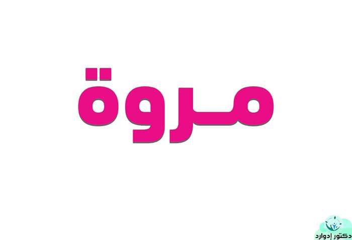 معنى اسم مروة في اللغة العربية